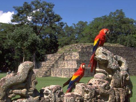 Ruinas de Copán Honduras